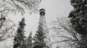Aldina Fire Tower Superior Hiking