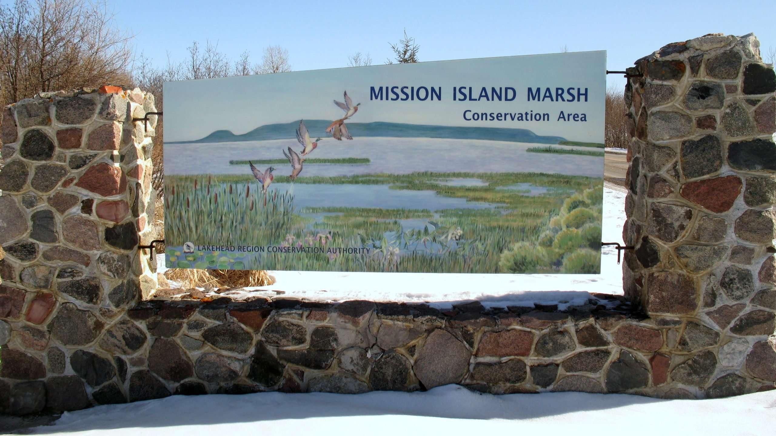 Mission Island Marsh