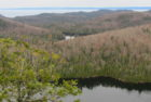 Peat Mountain